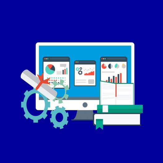 Management des organisations/PME